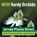 jersey_plants_direct_default.jpeg